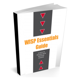 wisp-essentials-guide-3d-image.png